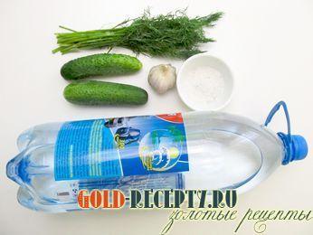 соленые огурцы рецепт