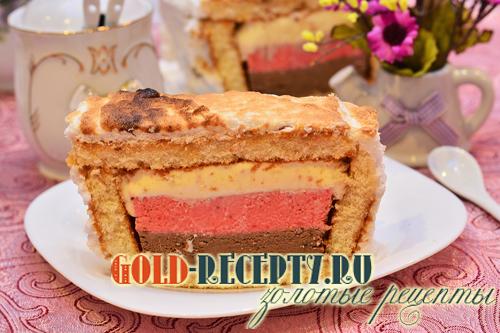Торт-мороженое. Торт с тремя видами мороженого. Рецепт от сайта Золотые рецепты